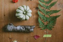 Autumn Equinox / Foods in season: squash, pumpkin, apples, pears, sweet potatoes, Brussels sprouts, cranberries, pomegranate, celery root, parsnips, turnips, grapes