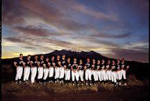 Golden Homes Black Sox / Softball Black Sox BSX New Zealand NZ
