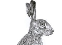 just mad about Hares / by Victoria Scarfield