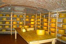 Ripening cellars