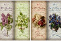 Grafika. Kwiaty