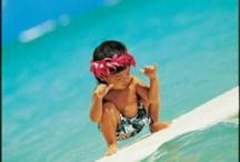 Beach Sea Surf / null