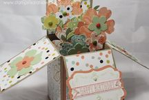 Stampin Up....card in a box / by Sandy Carlson, Stampin' Up Demonstrator