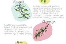 bylinky
