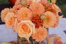Fall Decor / by Brittany Roen