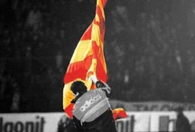Galatasaray / Galatasaray Cimbom ultrAslan sarı kırmızı