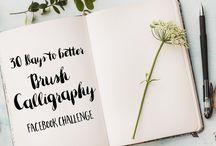 Calligraphy & brush lettering