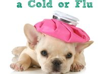 All-Natural Cold Remedies