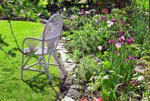 Gardening 23