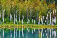 Portage Lake in Chugach National Forest, Alaska #HeathrowGatwickCars.com