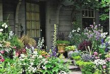 The Garden Path / by Elly Earl