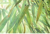calvendo Kalender - calendars / Entdecke die Vielfältigkeit der Kalender von Heidemarie Andrea Sattler. Ob puristisch, figurativ oder samtweich und pfirsichzart. Fotografie, Grafik, Digital Art und Malerei bieten ein breites Spektrum an Motiven. Finde deinen Lieblingskalender :-)