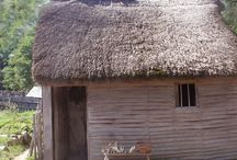Wampanoag and Pilgrim Homes / During the time of Thanksgiving the Wampanaog lived in Wetu and the Pilgrim lives in wood and sod structures.
