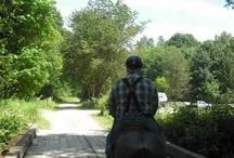 Big Bad Horse Sale / Horse sale June 2 2012