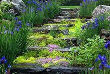 Ogrody i ścieżki