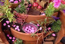 Jardines de hadas / mini jardines en maceta