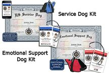 Service Dogs Unite! / Emotional support dog  / by Tierra Fuentes