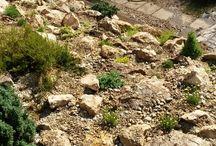 Sziklakert- Rock garden / Kreakert sziklakertek- Kreakert rock gardens
