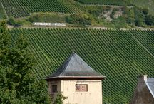 Wine tourism Moselle