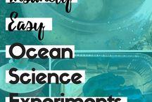Oceans / Ocean science, water cycle, tides, and coral reef.