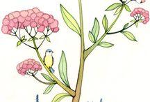 kuşlar-duvar kâğıdı