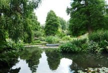 Gardens to visit / Our favourite gardens to visit around the UK