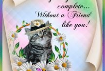 FRIENDS ENGLISH, AFRIKAANS & GET WELL WISHES