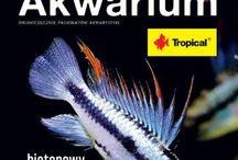 Okładki Magazynu Akwarium