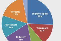 Human Energy Consumption