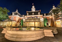 Walt Disney World / Matthew Cooper Photography explores Walt Disney World through photography.