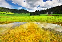 Parcul Natural Apuseni / Parcul Natural Apuseni este renumit pentru frumusetea si diversitatea reliefului carstic care ofera un peisaj carstic remarcabil atat ca intindere, cat si ca amploare si varietate a formelor.