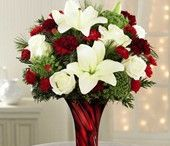 Frugal Flower Christmas Best Sellers / Gorgeous Christmas flowers like roses and Orchids make great Christmas gifts for moms, grandmothers, and friends this holiday season. Send the gift of beauty to everyone you love, or choose a delightful arrangement to complete your Christmas table or holiday display. Make this Christmas memorable by creating a and unique personalized Christmas gift. Take a look at our collection of unique Christmas favorites.