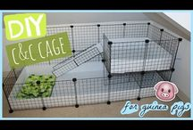 Cage idea / Ideas to cage and cage design
