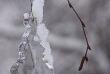 Talvi ja joulun odotus