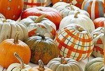 HOLIDAYS -- Halloween