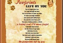 Pet Loss Poems/Quotes / A compilation of different quotes, sayings and poems to help deal with the loss of a pet.