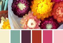 Kleurenpalette