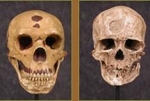 Neanderthals / by Kaye George