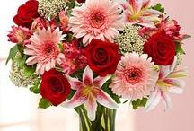 Flower arrangement / by Charlotte Knowles Blandford