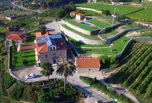 Quinta das Quintães / Quinta das Quintães   Valpedre   Penafiel   Portugal