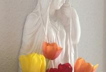 Meditation / Profitiere von unserer jahrelangen Erfahrung. Ernte die Früchte unserer jahrelangen Erfahrung. In einem Meditationsgespräch gehen wir direkt zur Wurzel deines Problems.