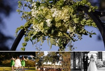 Magnolia Plantation / Pictures of wedding and receptions at beautiful Magnolia Plantation in Charleston, SC