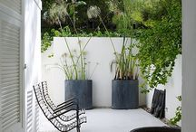 Patios/Terraces / Outdoor spaces
