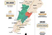 Lebanon Wine Regions