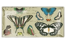 Butterflies Galore / by Casart Coverings