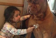 Kids with pets<3