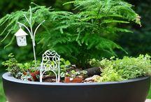 Mason Mini Garten