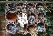 Magic Garden boxes / Inspired by the garden