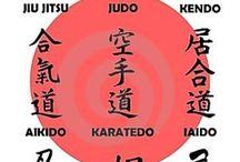 Aikido / Arts martial