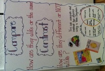Anchor Charts  / by Kim Perrone